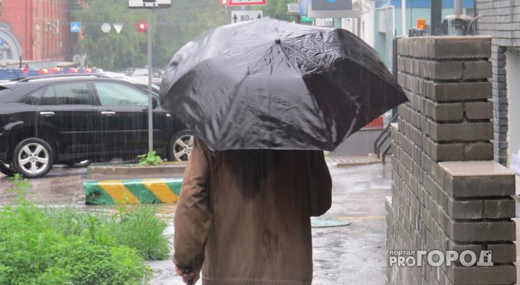 Дождь со снегом: прогноз погоды в Чепецке на предстоящую неделю