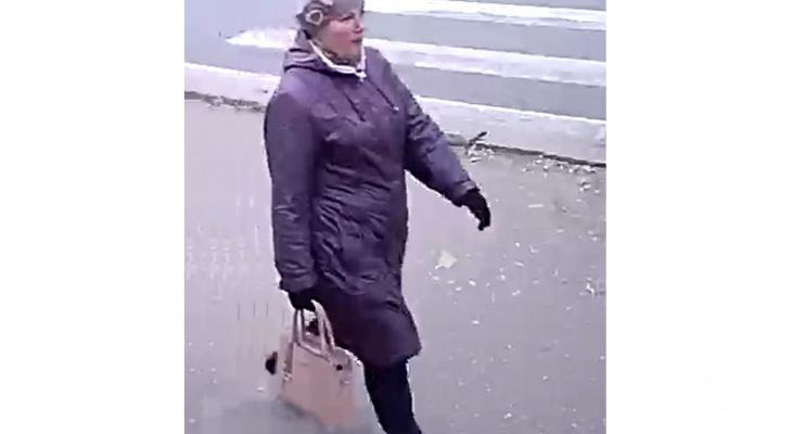 Кировская полиция разыскивает мошенницу, обманувшую чепчанку
