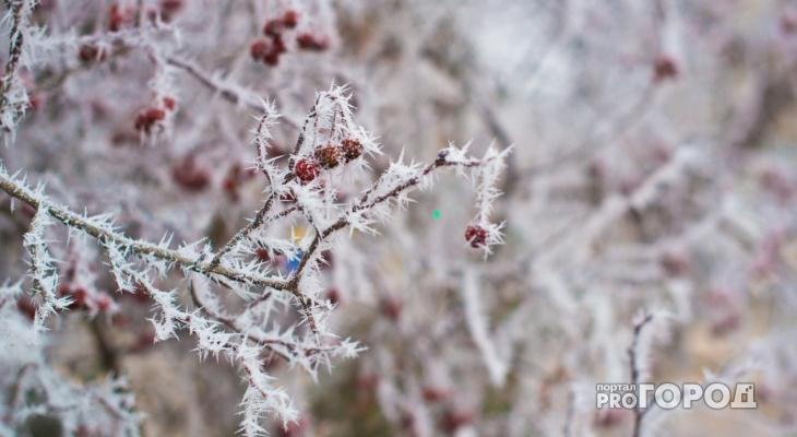 Снегопад и потепление: погода в Чепецке в первые дни декабря