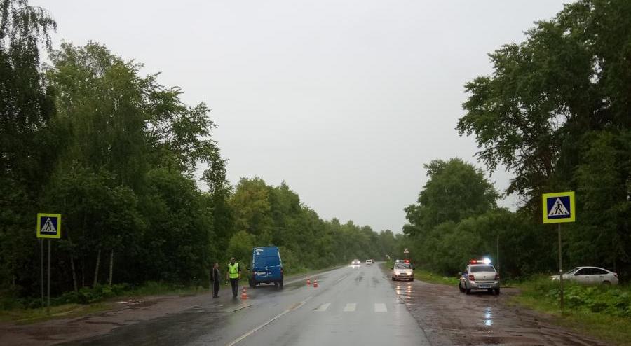 В Кирово-Чепецком районе водитель фургона сбил женщину