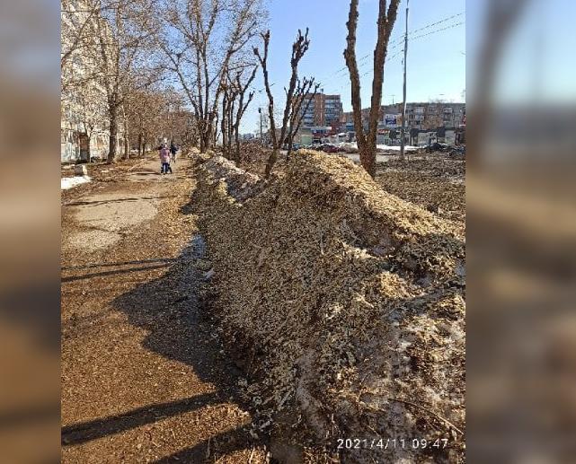 «Сэкономили на вывозе?»: чепчане жалуются на кучи опила на пешеходной дорожке