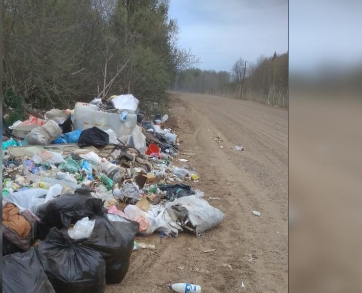 В Кирово-Чепецком районе образовалась огромная свалка, которая с каждым годом растет