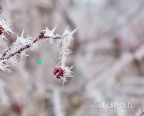 В Кировской области прогнозируют 50-градусные морозы