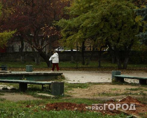"""В Кирово-Чепецке в 2021 году начнется ремонт парка """"Южный"""""""