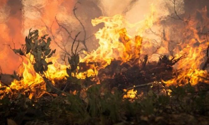 Жители Чепецка, пострадавшие от пожаров, получат компенсацию в 30 тысяч рублей