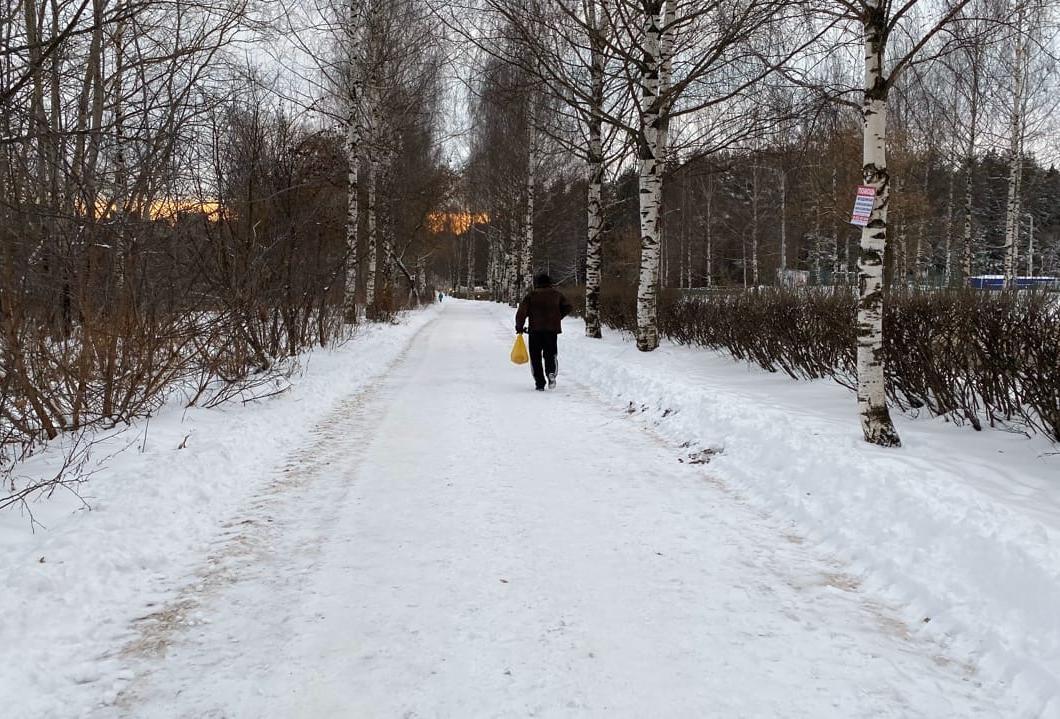Потепление после легких морозов: прогноз погоды на выходные в Кирово-Чепецке