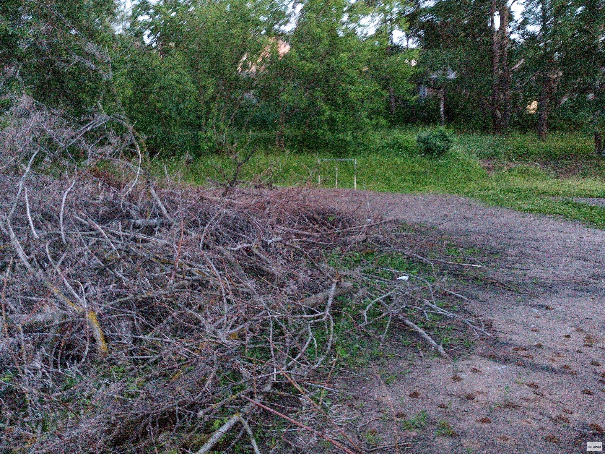Футбольное поле в центре Чепецка завалили ветками