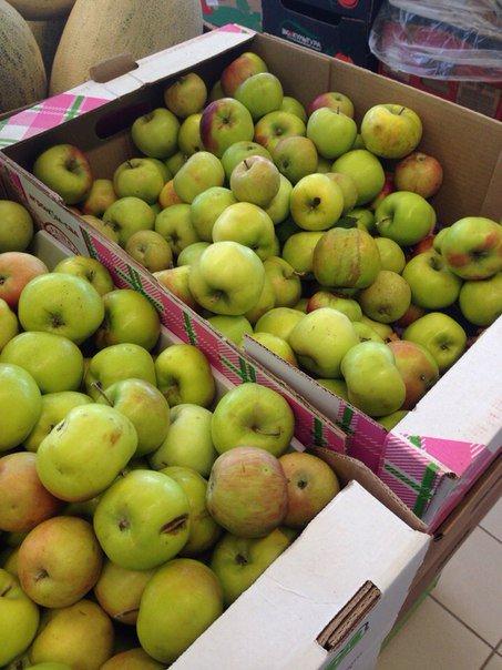 Ценомер: где в Чепецке дешевле всего купить яблоки?