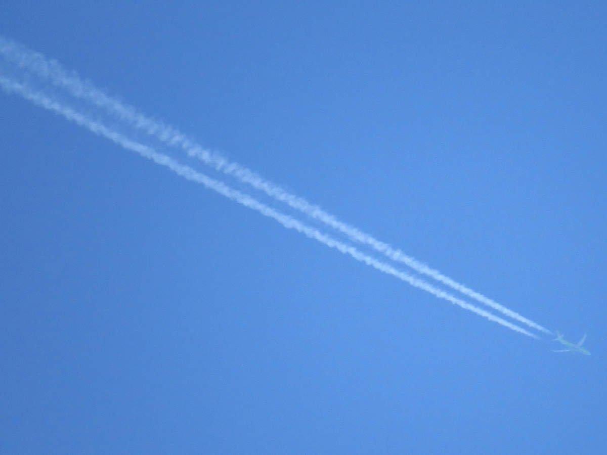 В Интернете появилось предполагаемое видео падения самолета в Египте