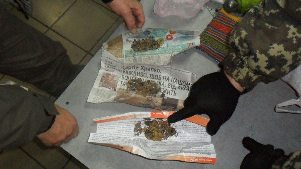 На границе Украины задержали наркомана, который вез в Кировскую область галлюциногенные грибы