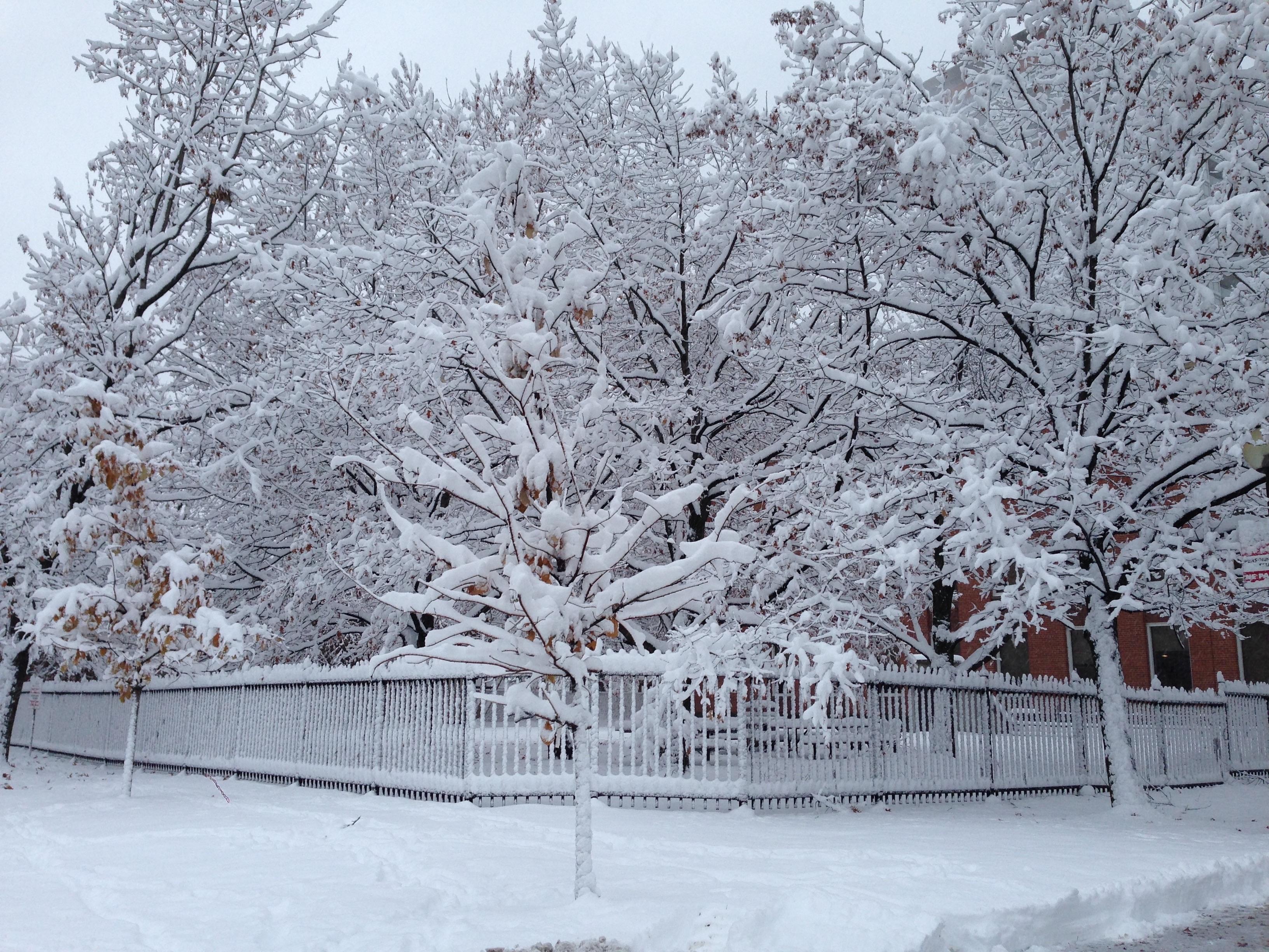 Резкое потепление: какая погода ждет Кирово-Чепецк на неделе?