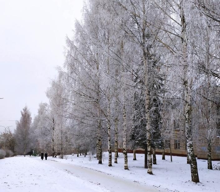 Похолодание до -26 и сильный ветер: прогноз погоды в Кирово-Чепецке на неделю