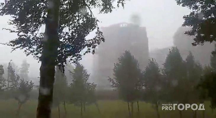 Жителей Кировской области предупреждают об усилении ветра