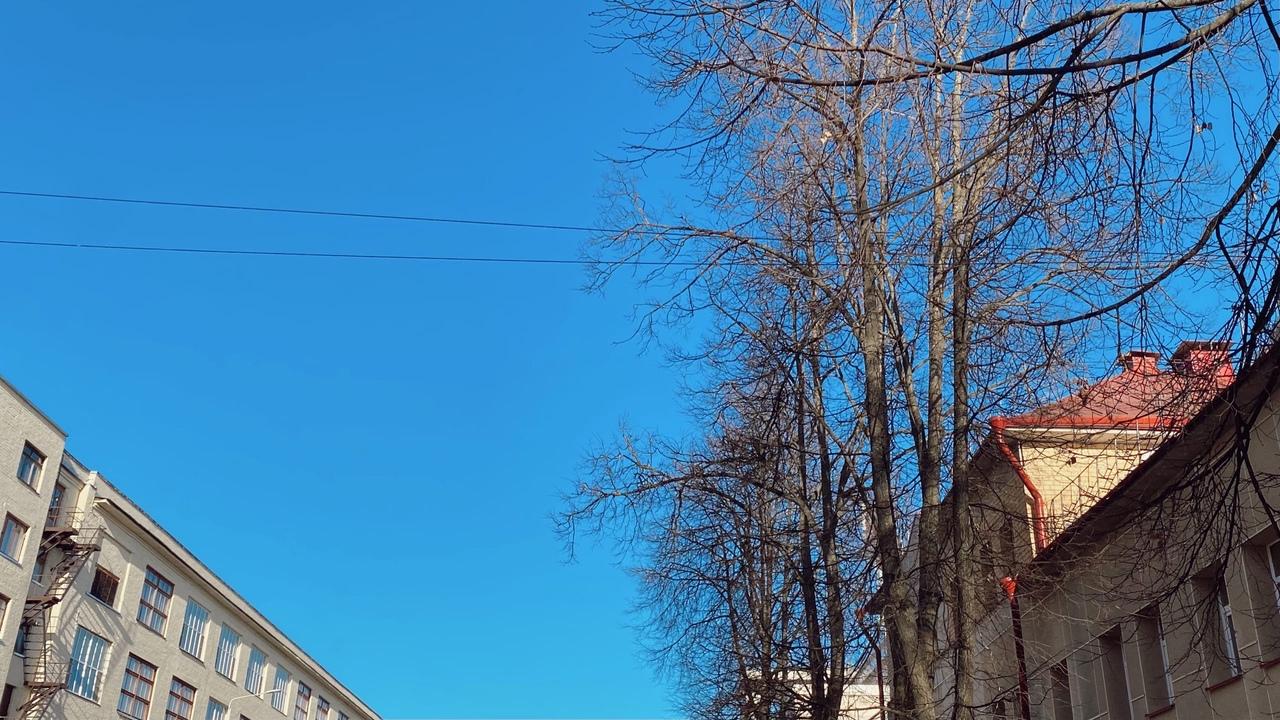 В Чепецке наступит 20-градусное тепло: подробный прогноз погоды на неделю