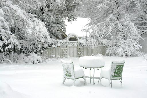 8 необычных способов украсить сад зимой