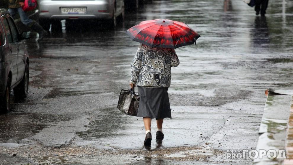 В Кировской области ожидается шквалистый ветер: объявлено метеопредупреждение