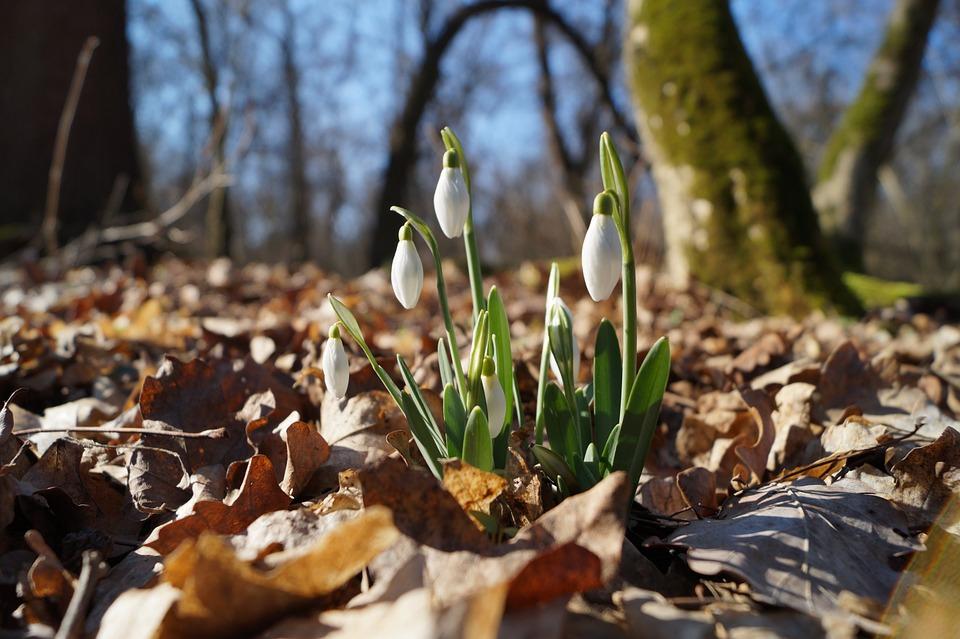 Прогноз погоды на месяц: каким будет апрель в Кирово-Чепецке?