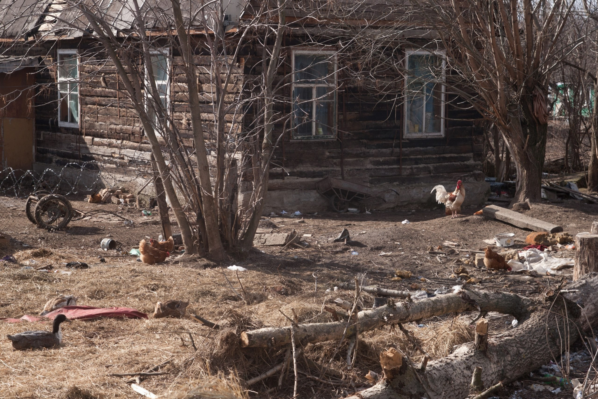 В Кировской области мужчина три месяца жил в доме, где находился труп