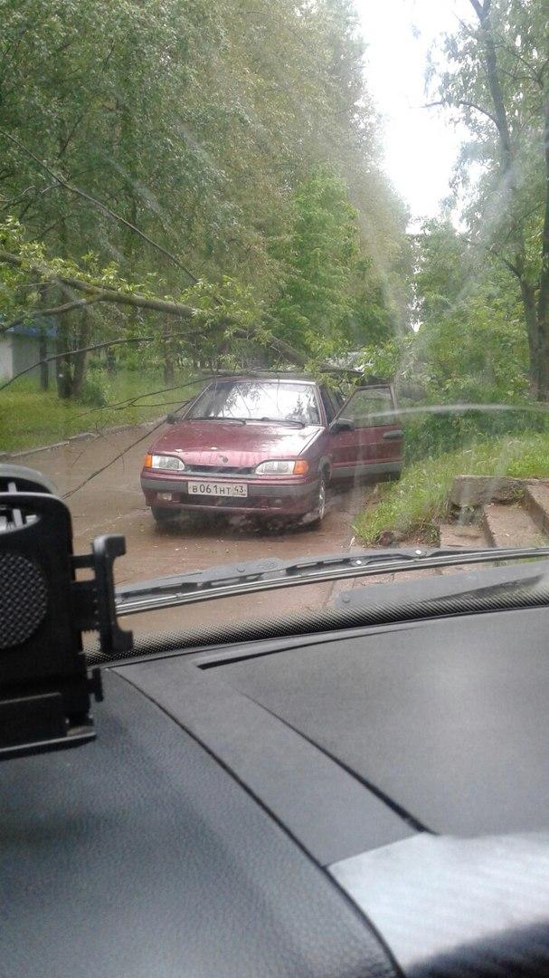 В Кирово-Чепецке на улице Ленина на машину упало дерево