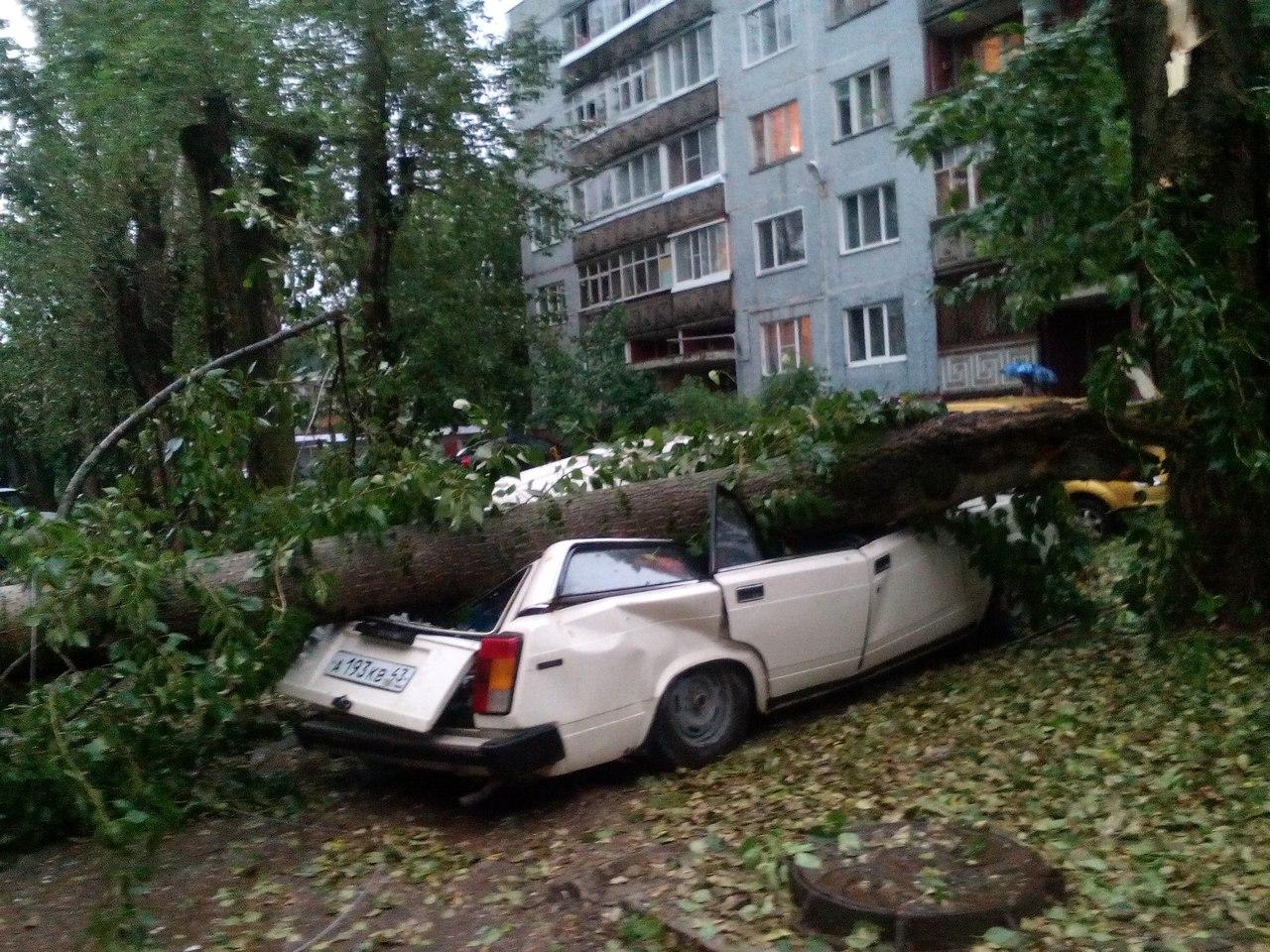 Вырванные с корнем деревья, оборванные провода и искореженные авто: на Чепецк обрушился ураган