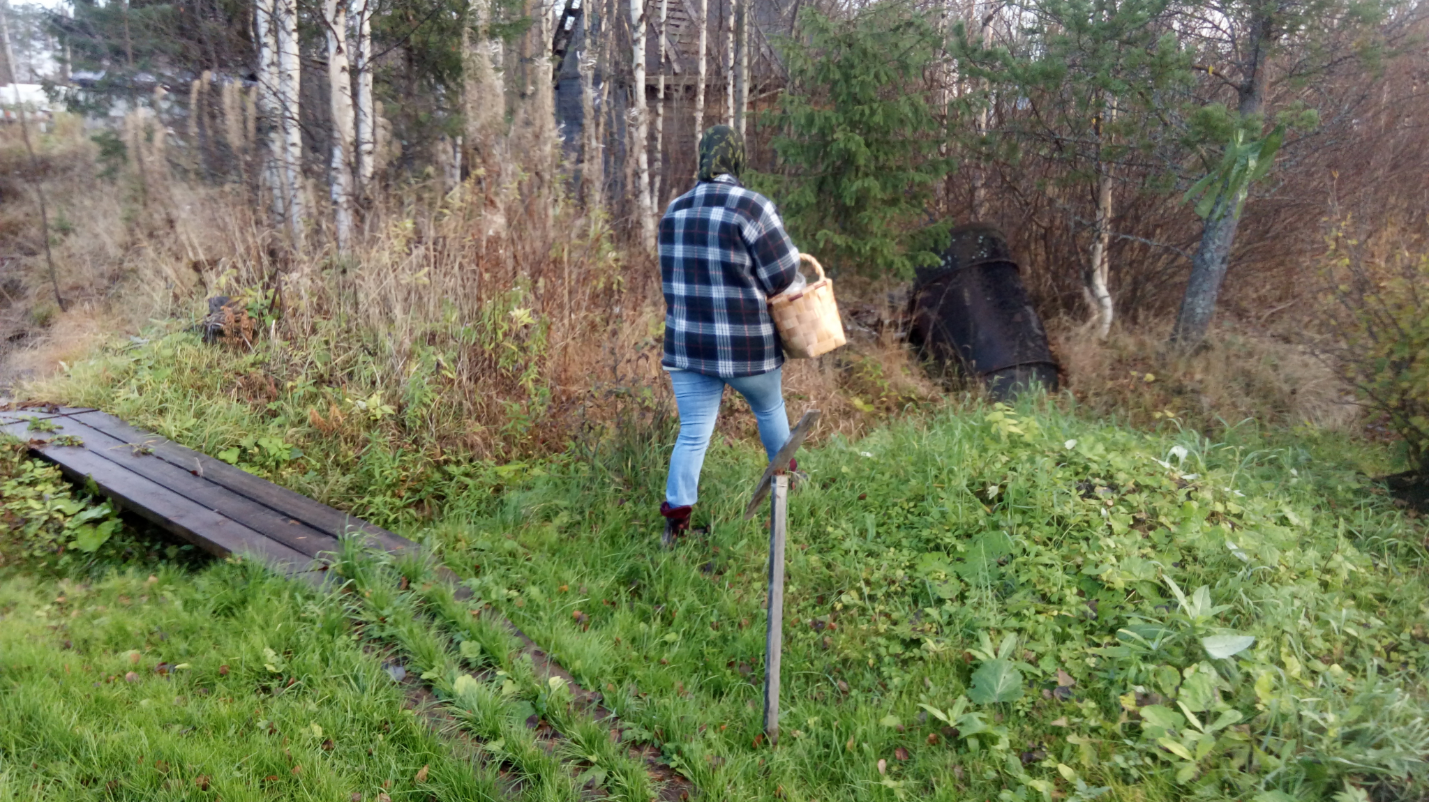 В Кировской области пропали три пенсионера