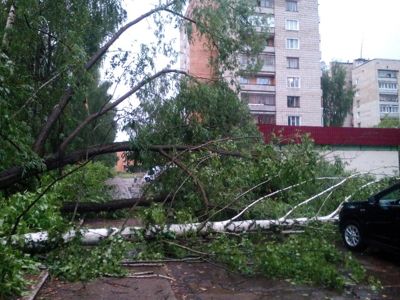 Что обсуждают в Чепецке: последствия урагана и гибель молодой пары в ДТП