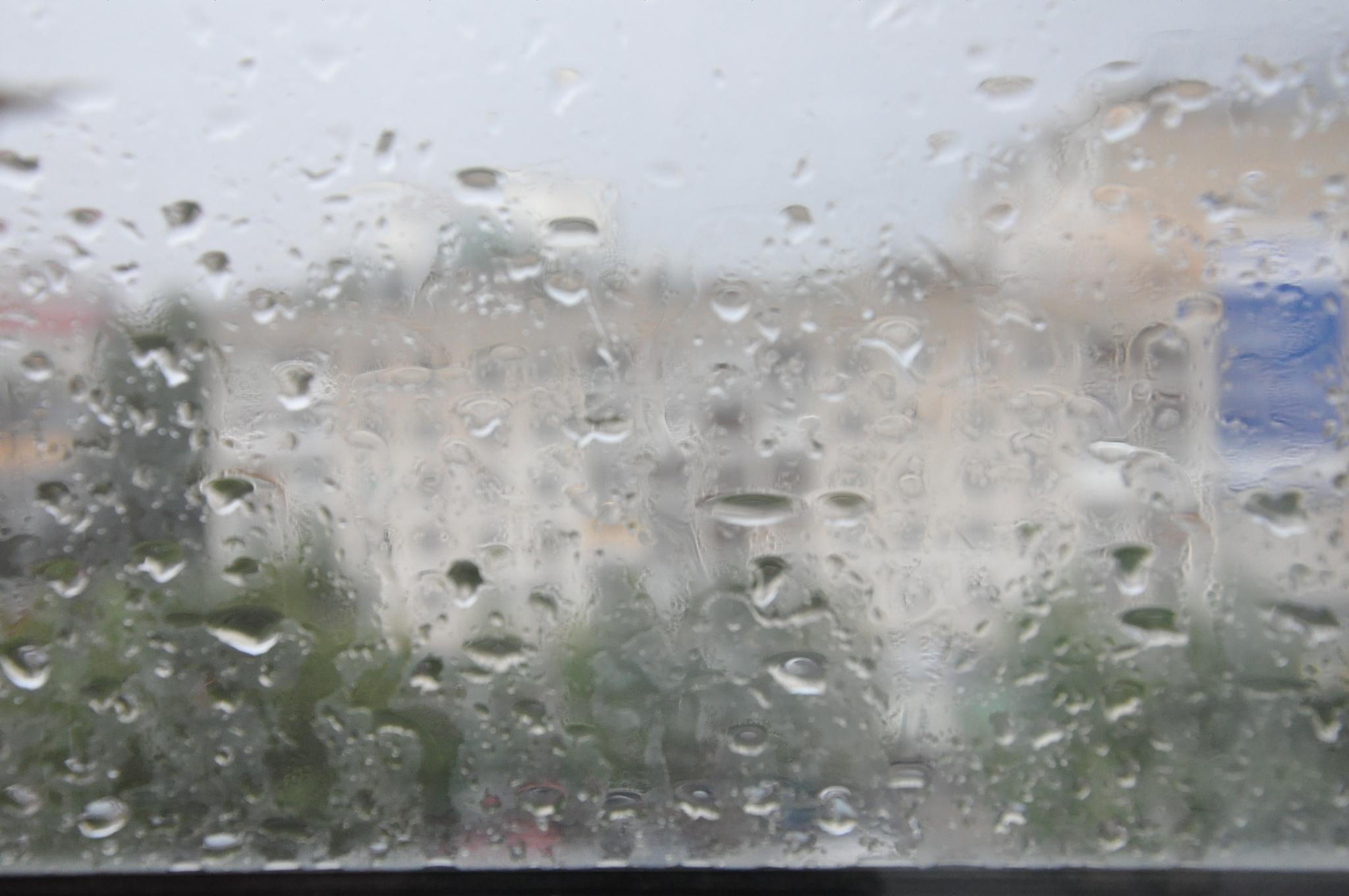 Неделя в Кирово-Чепецке будет дождливой