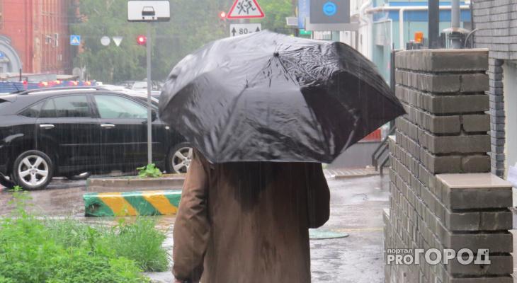Прогноз погоды: предстоящая неделя в Чепецке будет прохладной