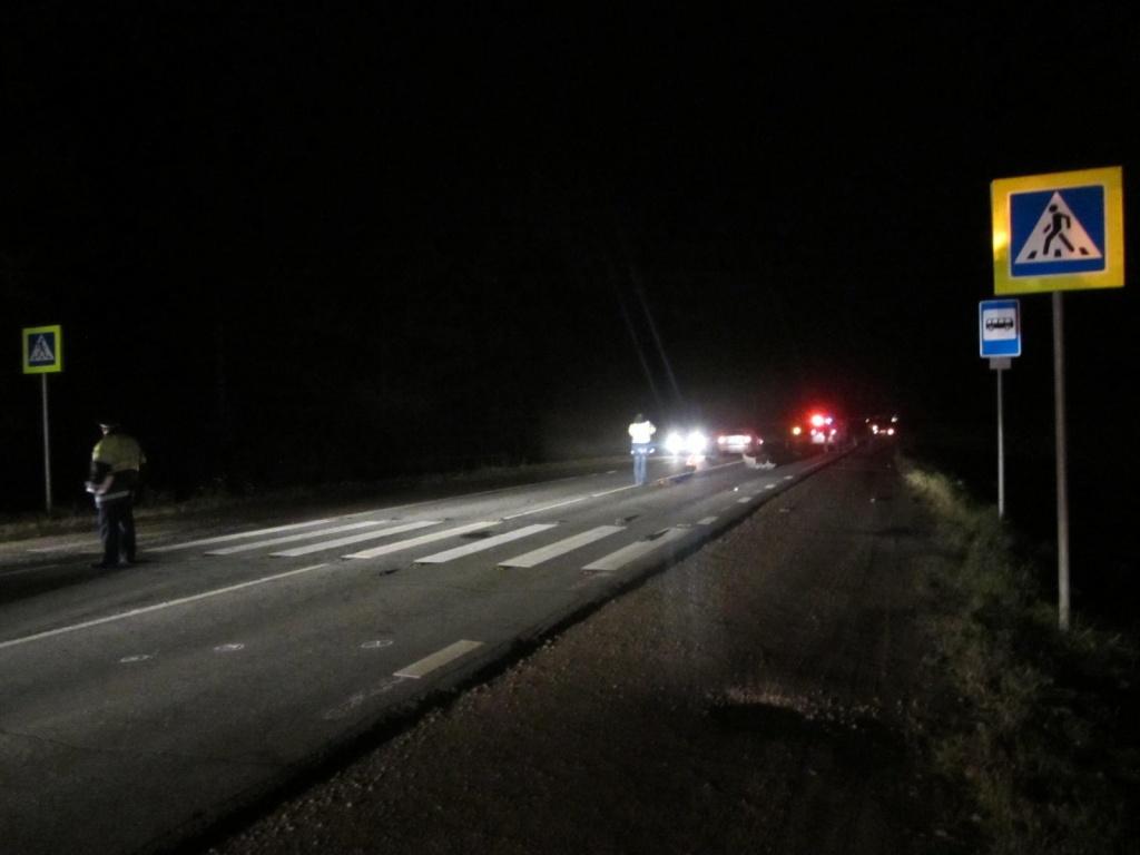 В Кировской области водитель иномарки насмерть сбил двоих человек