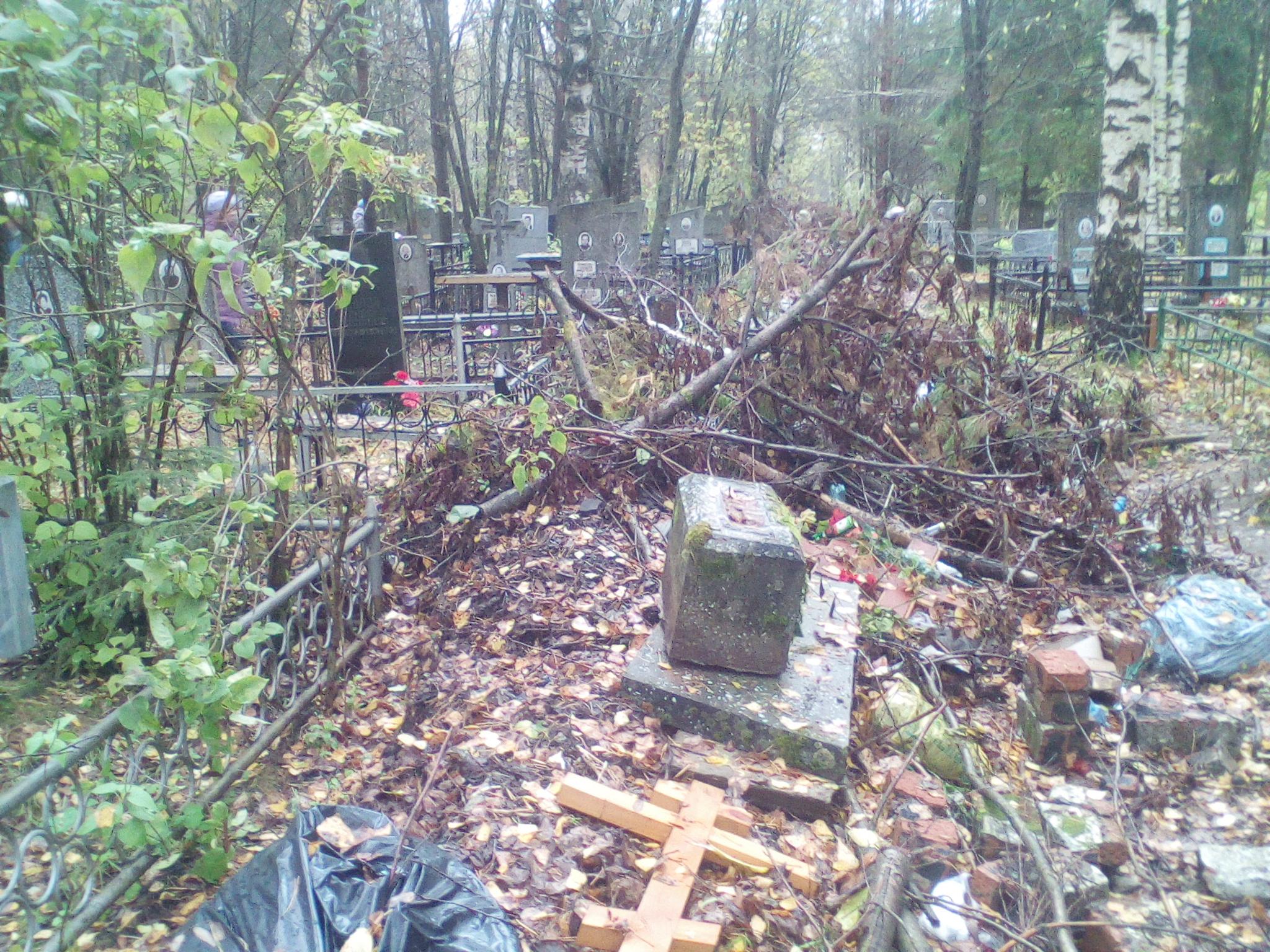 Кладбище в Злобино не очистят в этом году от мусора