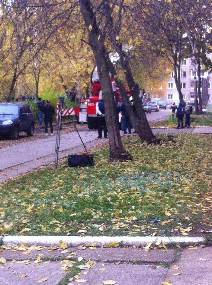 В Чепецке под аплодисменты горожан спасатели сняли кошку с дерева