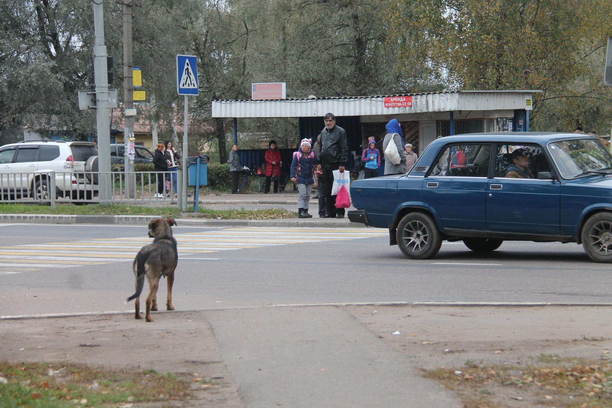 В Чепецке обновят девять остановочных павильонов