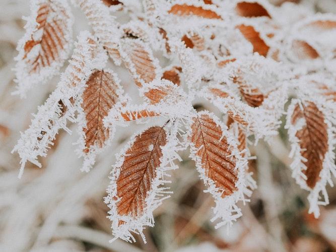 Прогноз погоды: какими будут первые зимние выходные в Кирово-Чепецке?