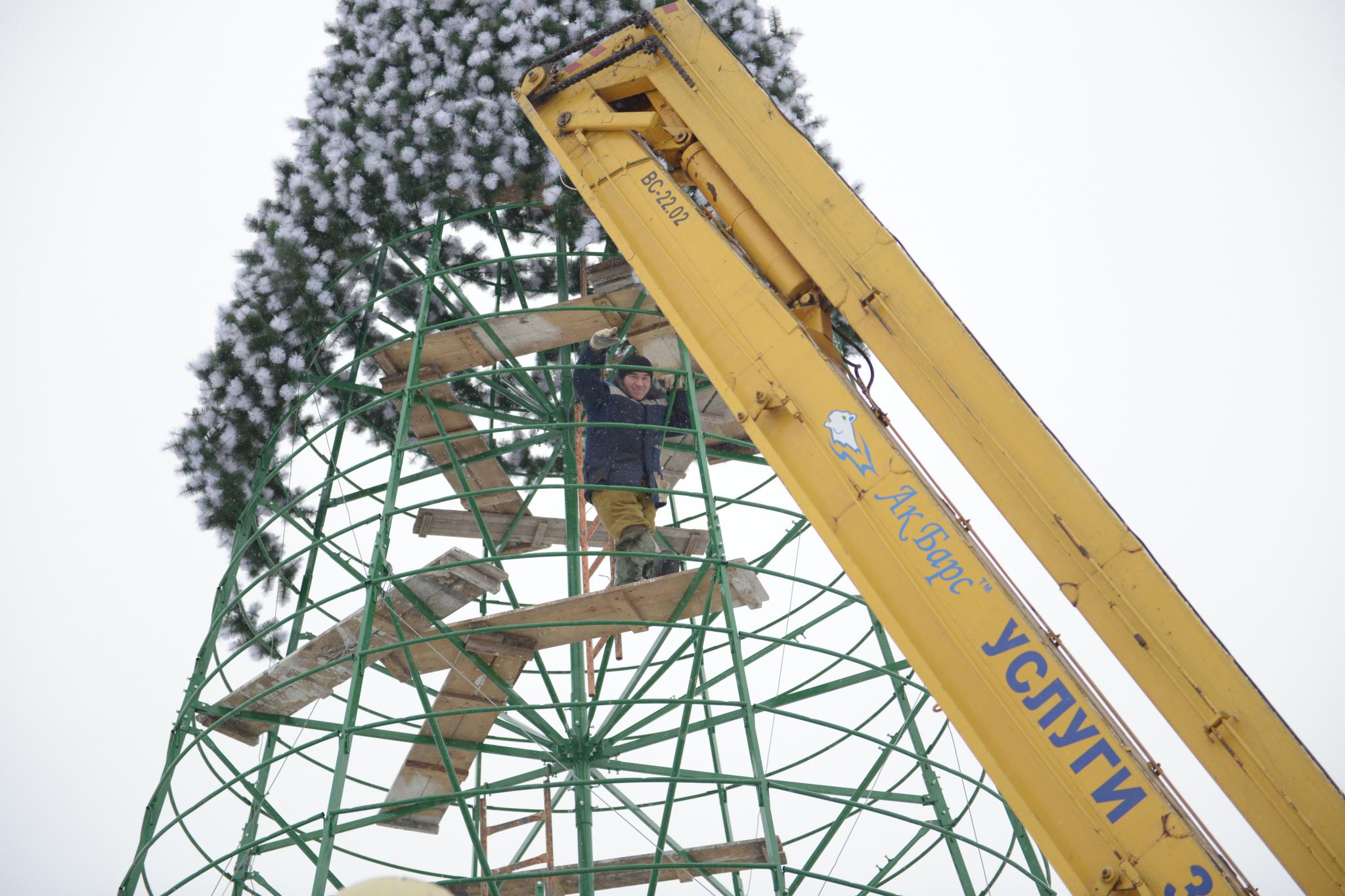 4 самые странные елки в Кировской области