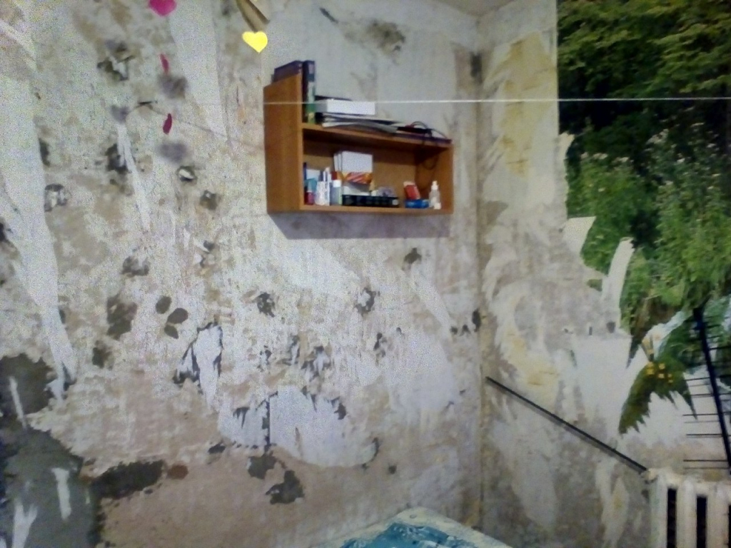 Сироте из Чепецка вместо полуразрушенной квартиры дадут нормальное жилье