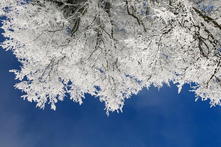 Прогноз погоды: какой будет предпраздничная рабочая неделя в Чепецке?