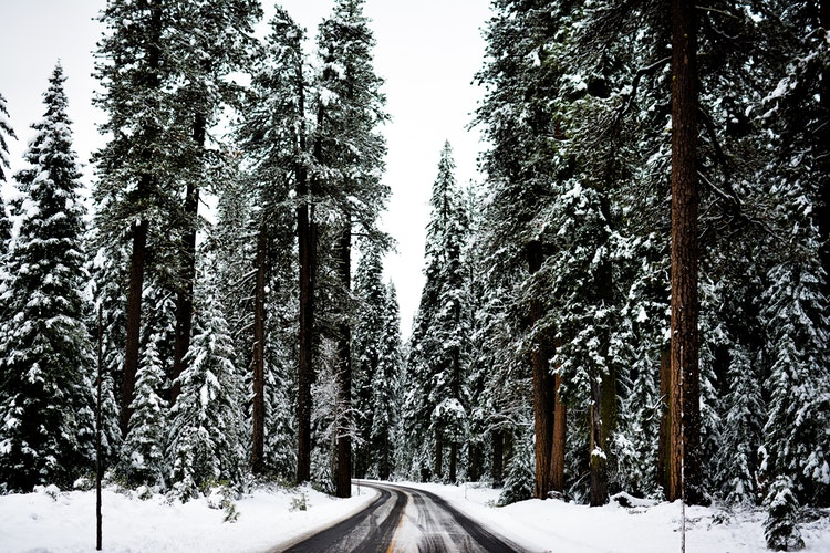 Третья декада февраля в Кировской области будет морозной