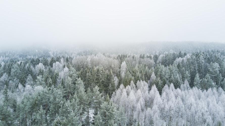 МЧС предупреждает о 32-градусном морозе в Кировской области