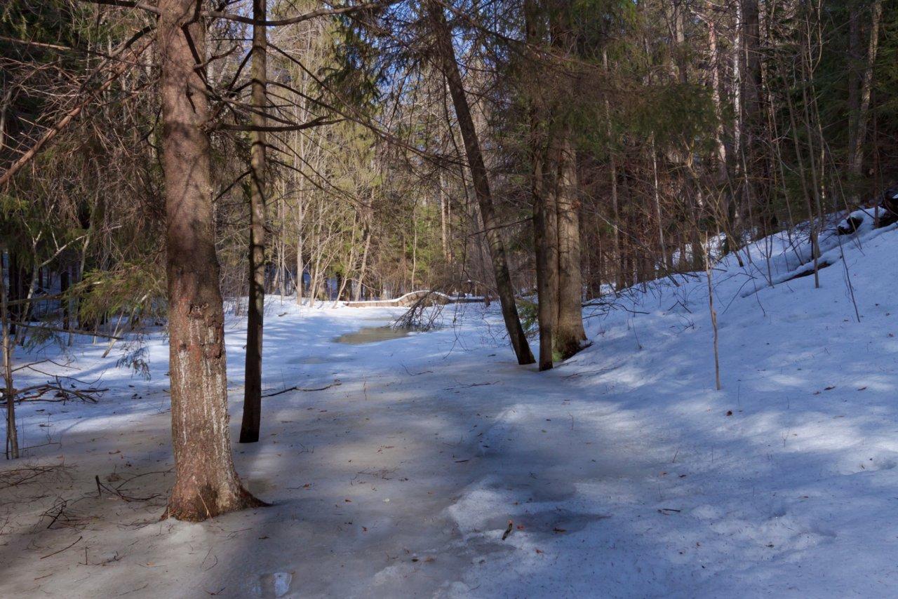Синоптики рассказали, когда в Кирово-Чепецке потеплеет