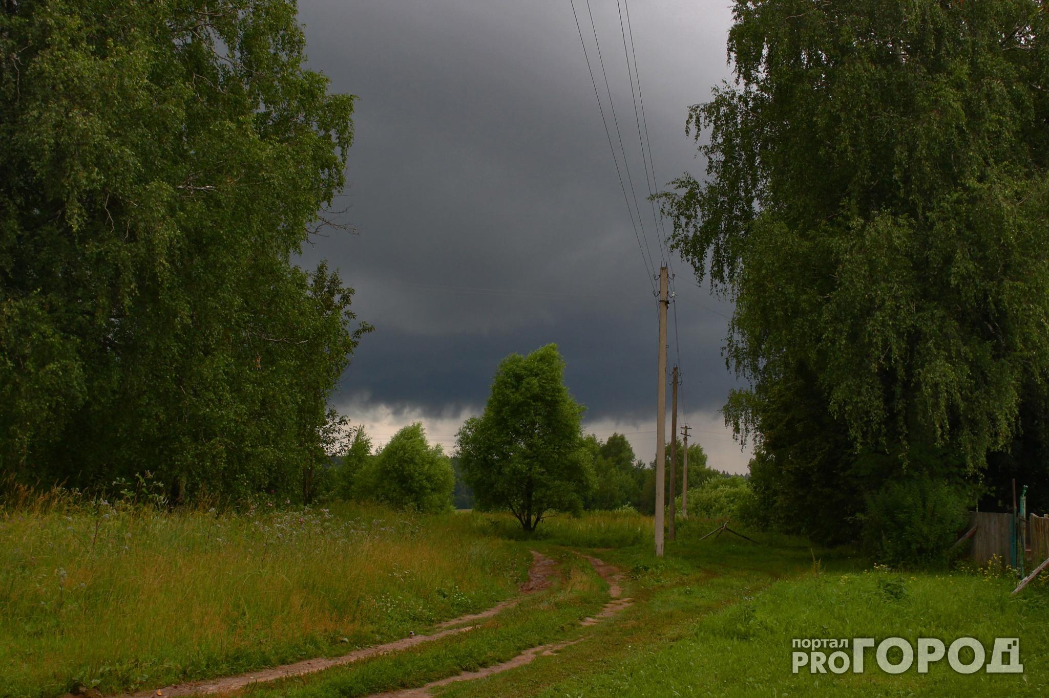 Прогноз погоды: какими будут первые летние выходные в Чепецке?