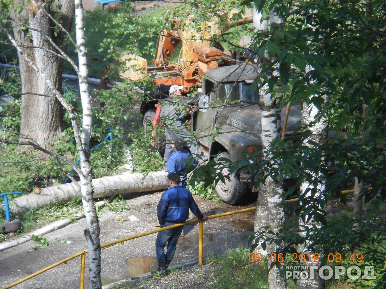 На машину рабочих, которые приехали спиливать деревья, упал тополь