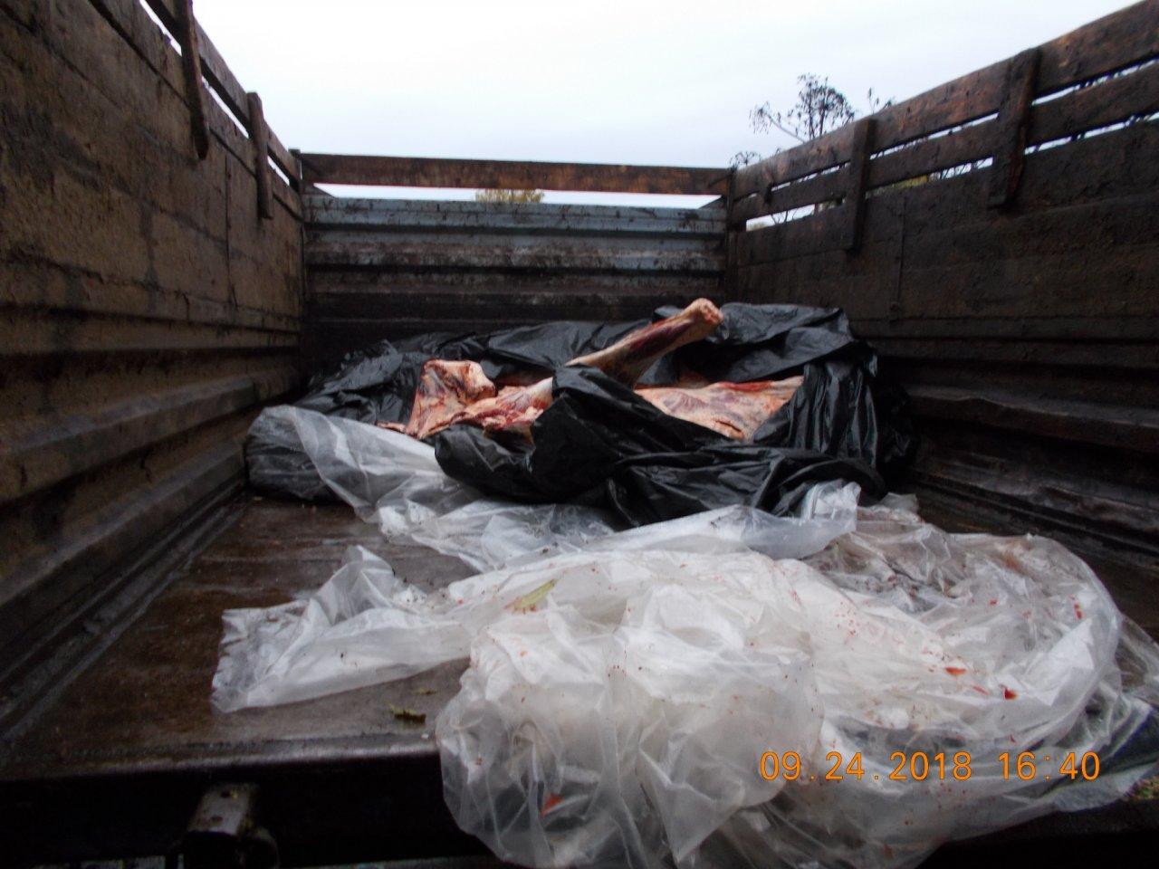 На трассе Кирово-Чепецк - Киров задержали машину с опасным мясом