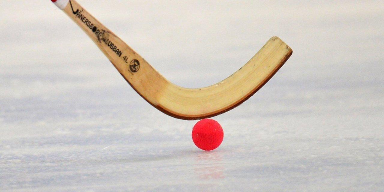 В Кирово-Чепецке пройдет Кубок России по мини-хоккею с мячом