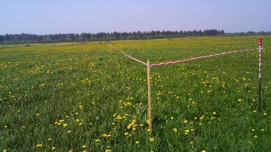 Стало известно, где выделят земельные участки многодетным семьям Чепецка