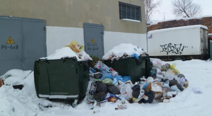 Известно, сколько жители Кирово-Чепецка будут платить за вывоз мусора в 2019 году