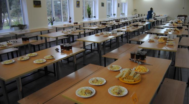 В Кировской области в школьной столовой отравились 20 детей
