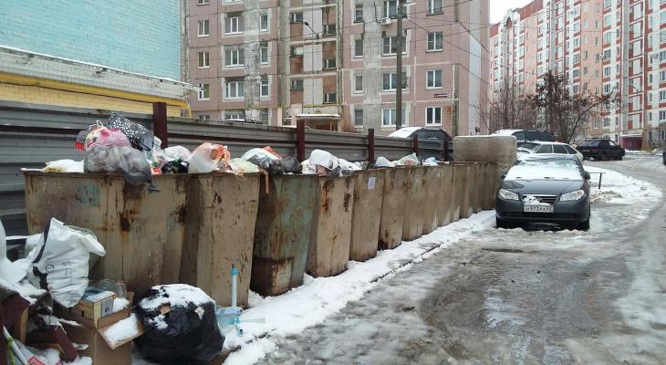 С «квадрата» или с человека: чепчане могут проголосовать за способ платы за мусор