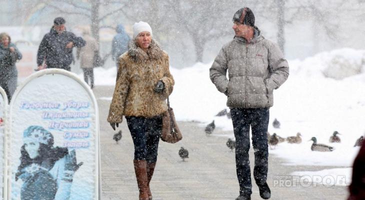 Комфортная зима и поздняя весна: предварительный обзор погоды на 2019 год в Кировской области
