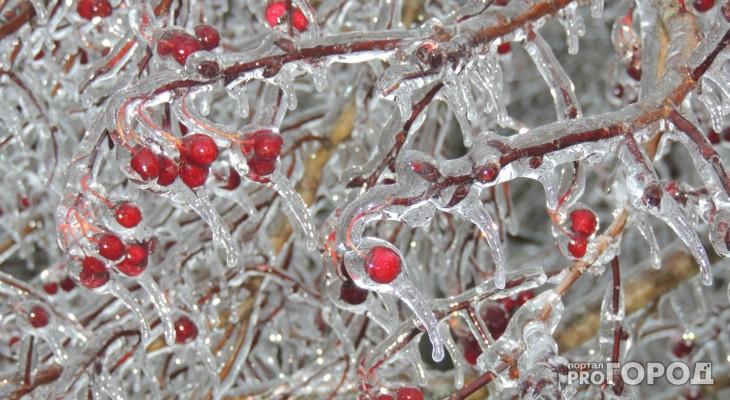 Чепчан предупредили о резком похолодании до -23 градусов в выходные
