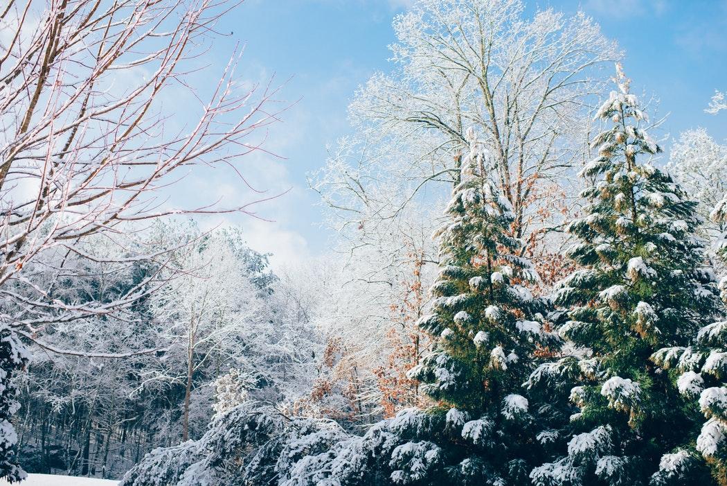 На этой неделе в Кирово-Чепецке  ощутимо потеплеет